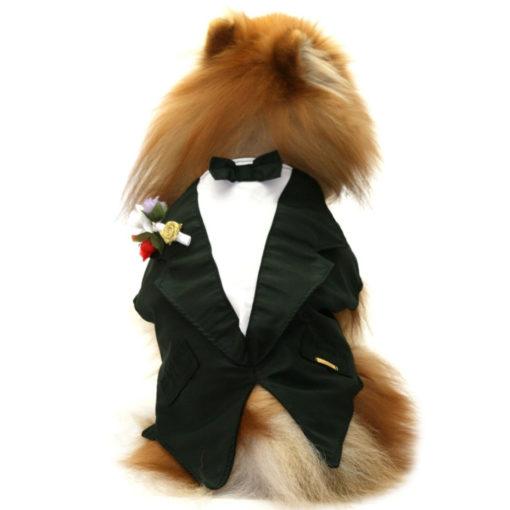 roupa de cachorro para casamento fraque