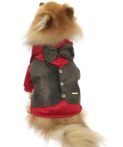 roupinha de cachorro para festa com gravata borboleta