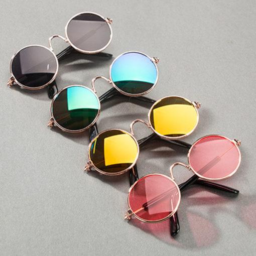 oculos ray ban para cachorros