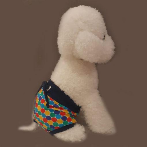 sunga para cachorro estampada colorida