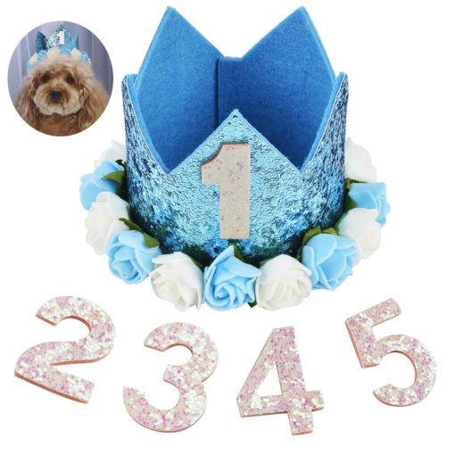 coroa de aniversário para cachorro azul