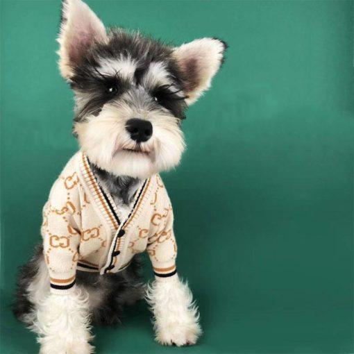 suéter creme para cães