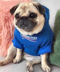 moletom marca balenciaga para cachorro