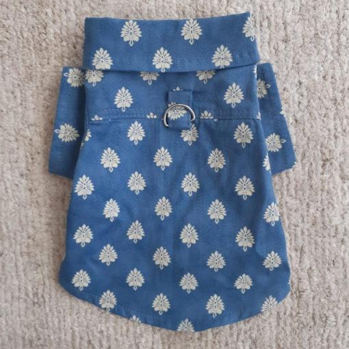 camisa para cachorro folhas azul verão