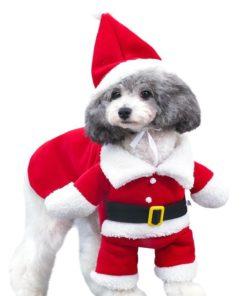 fantasia de natal para cachorro bracinhos
