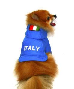 casaco itália azul para cachorro