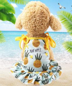 vestido de verão abacaxi para cachorro