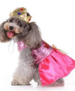fantasia de princesa com coroa para cachorro
