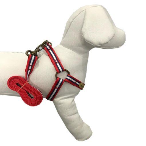 coleira peitoral vermelha e azul para cachorro