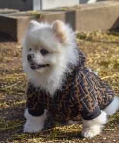 Roupas para Cachorro Macho